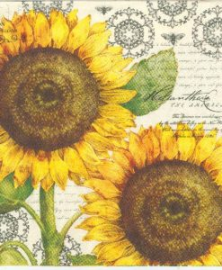 Botanical sunflower cream